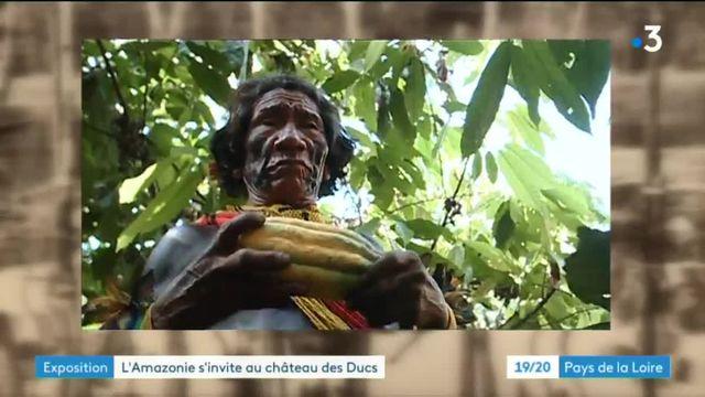 Expo Amazonie au château des Ducs de Bretagne à Nantes