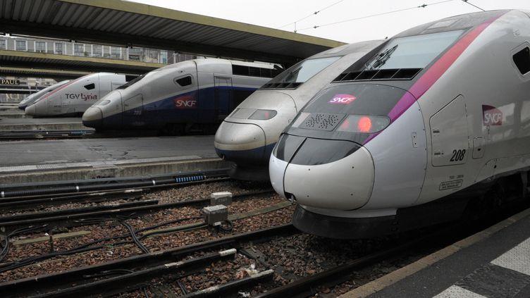 Le préavis déposé par la CGT, l'Unsa et Sud-Rail, rejoints par FiRST, court du mercredi 11 décembre 2013 à 19 heures au vendredi 13 décembre 2013 à 8 heures. (ERIC PIERMONT / AFP)