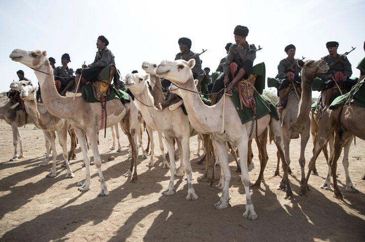 Les méharistes de la Garde nationale mauritanienne (THOMAS SAMSON / AFP)
