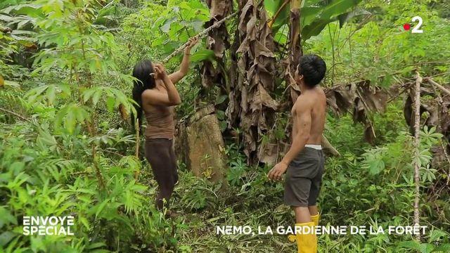 Envoyé spécial. Défense de la forêt amazonienne : comment les Indiens waorani ont gagné contre l'industrie pétrolière