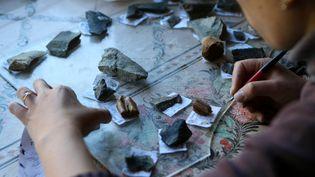 Un archéologue analyse des pièces découvertes dans la grotte de Denisova (Sibérie) où ont été trouvés les restes d'un homidé rataché à un groupe frère del'homme de Néandertal. (ALEXANDR KRYAZHEV / SPUTNIK)
