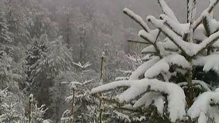 De la neige est tombée, vendredi 24 mai 2013, sur le col de la Schlucht (Vosges). (FRANCETV INFO / FRANCE 2)