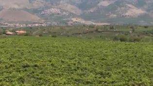 etna (FRANCE 2)