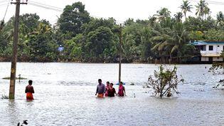 La mousson dans le Kerala, l'une des plus importantes depuis un siècle, a détruit de nombreuses habitations etfait plus de 410 morts. (PRAKASH ELAMAKKARA / EPA)