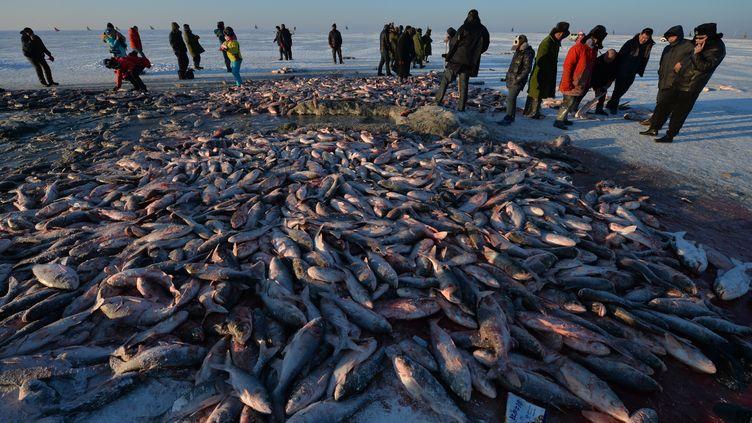 Des pêcheurs chinois, le 28 décembre 2013 sur le lac Chagan (Chine). (MARK RALSTON / AFP)