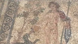 Une fresque romaine découverte dans la Vienne. (FRANCE 3)