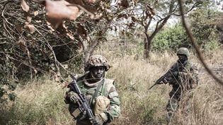 Des soldats sénégalais sécurisent les alentours d'un camp de rebelles démantelé en Casamance, dans la forêt de Blaze, le 9 février 2021. (JOHN WESSELS / AFP)