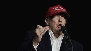 Donald Trump, en meeting en Pensylvanie le 6 novembre 2016, à la veille de l'éléction présidentielle américaine. (MANDEL NGAN / AFP)