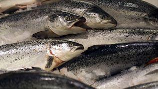 Du saumon d'élevage norvégien sur un étal de supermarché au Kremlin-Bicêtre (Val-de-Marne), le 21 décembre 2012. (JOEL SAGET / AFP)