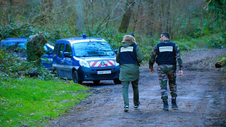 Lajuge d'instruction et des témoins se rendent sur les lieux de la mort d'Elisa Pilarski, dans la forêt de Retz (Aisne), le 12 février 2020. (MAXPPP)