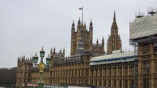 Le Palais de Westminster, où siège le Parlement, à Londres, le 8 janvier 2020. (GIANNIS ALEXOPOULOS / NURPHOTO / AFP)