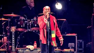 20 ans de reggae en Aquitaine grâce à l'association Reggae Sun Ska  (France 3 / Culturebox)