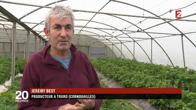 Brexit : les remords des agriculteurs