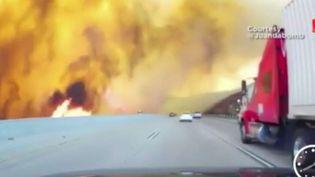 Les flammes ont ravagé plus de 2 000 hectares aux abords de Los Angeles. 500 policiers combattent le feu qui n'est circonscrit qu'à 10%. (FRANCE 2 / FRANCETV INFO)