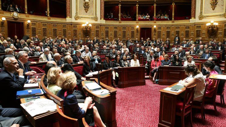 L'hémicycle du Sénat, le 4 juillet 2012, avant le discours de politique générale de Jean-Marc Ayrault, à Paris. (FRANCOIS LAFITE / MAXPPP)