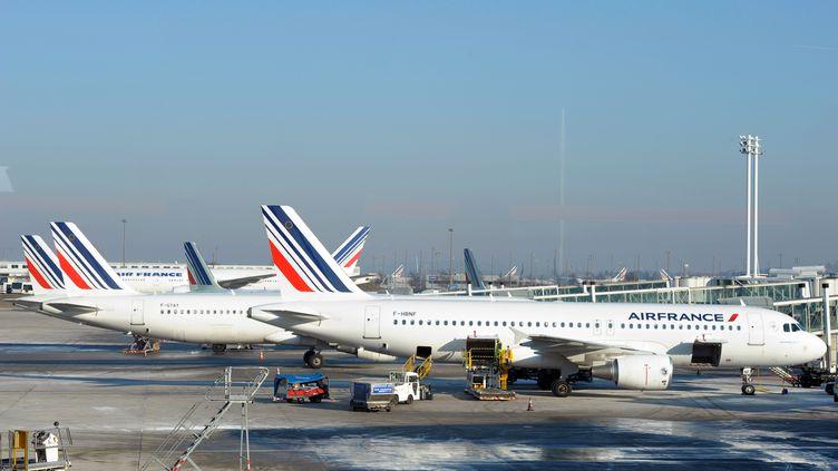 Des avions Air France, à Paris, le 7 février 2012. (BERTRAND GUAY / AFP)