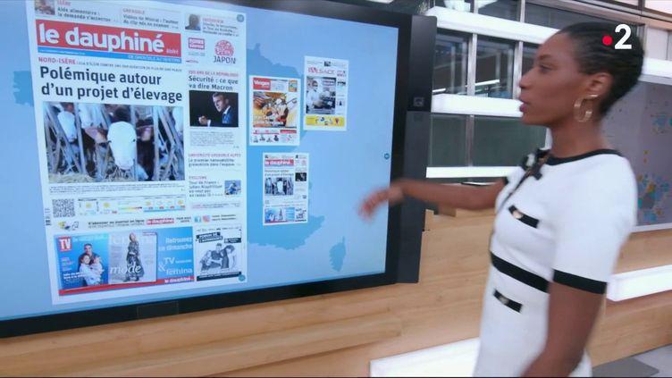 Le kiosque à journaux: 150 ans de la République, projet d'élevage, rugby…  (France 2)