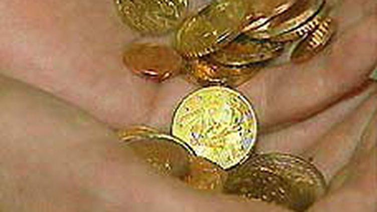 Des pièces d'euros (© DR)