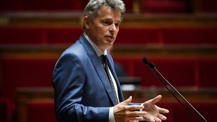 Fabien Roussel, à l'Assemblée nationale, le 10 juin 2020. (ANNE-CHRISTINE POUJOULAT / AFP)