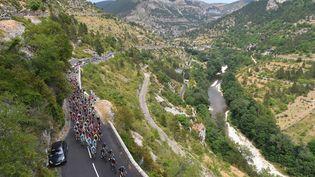 Le peloton lors de la 14e étape du Tour de France entre Rodez (Aveyron) et Mende (Lozère), le 18 juillet 2015. (DE WAELE TIM / TDWSPORT SARL / AFP)