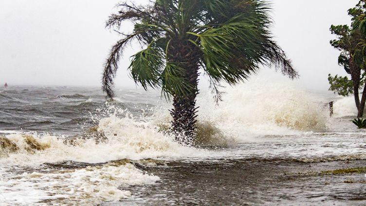 L'ouragan Michael arrive sur le front de mer de Shell Point Beach en Floride, le 10 octobre 2018. (MARK WALLHEISER / GETTY IMAGES NORTH AMERICA / AFP)