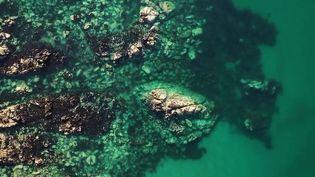 La côte d'émeraude est visitée chaque année par un million de personnes. Rencontre pour le JT du 20 Heures avec les gardiens des lieux, qui jour après jour protègent son patrimoine exceptionnel. (CAPTURE ECRAN FRANCE 2)