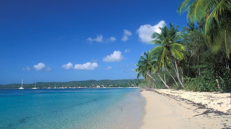 Grande Terre, plage deSainte Anne en Guadeloupe. (GETTY IMAGES)