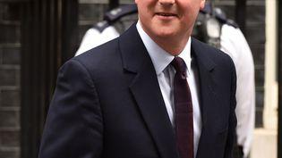 David Cameron, le Premier ministre britannique, le 8 mai 2015 à Londres (Royaume-Uni), devant le 10, Downing street. (LEON NEAL / AFP)