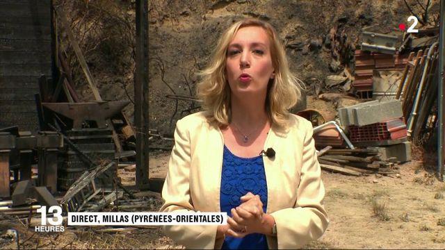 Pyrénées-Orientales : 90 hectares ont brûlé