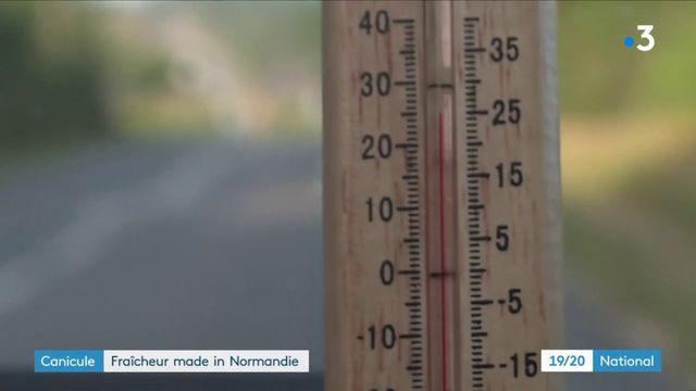 Canicule : l'endroit le plus frais de France se trouve dans le Cotentin