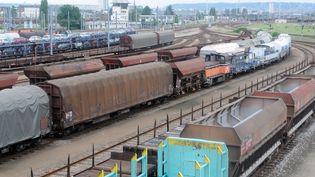 Des trains de fret en gare de Sotteville-lès-Rouen (Seine-Maritime). (ROBERT FRANCOIS / AFP)