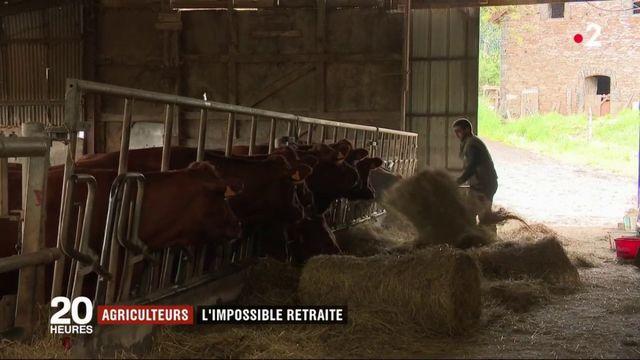 Agriculteurs : sans repreneur, une retrait impossible