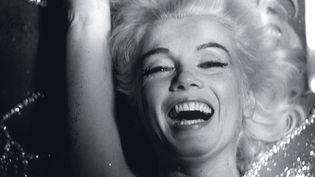La Dernière séance de Marylin par le photographe Bert Stern au musée Toulouse-Lautrec d'Albi  (Bert Stern)
