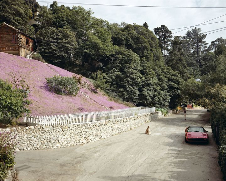 "Joel Sternfeld, ""Rustic Canyon, Santa Monica, California"", May 1979 (à Paris Photo) (© Joel Sternfeld)"