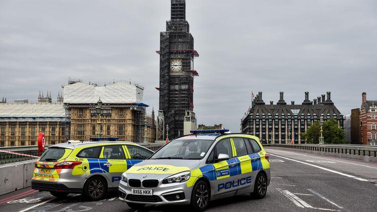 Des voitures de police après qu'une voiture a foncé dans les grilles du Parlement britannique à Londres, le 14 août 2018. (ALBERTO PEZZALI / AFP)