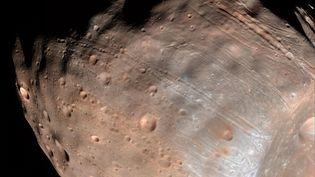 Phobos, la lune de Mars dont la destruction entraînera la formation probable d'un anneau autour de la planète rouge, d'ici 20 à 50 millions d'années. (NASA/JPL-CALTECH/U OF ARIZONA / AFP)