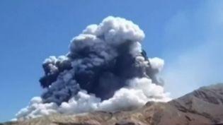 Une éruption volcanique a fait aux moins 5 morts et une vingtaine de disparus en Nouvelle-Zélande. (france 3)