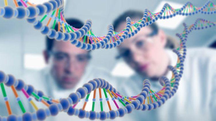 """""""C'est le premier inventaire à grande échelle de la diversité génétique humaine"""", souligne la scientifique Lynn Jorde. (gettyimages/Adam Gault)"""