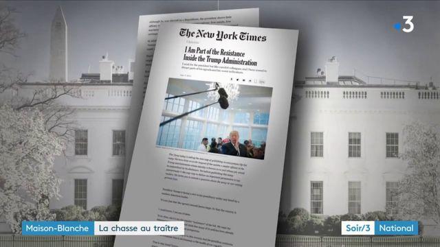 Maison-Blanche : la chasse au traître de Donald Trump
