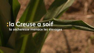 La Creuse a soif (CAPTURE D'ÉCRAN FRANCE 3)
