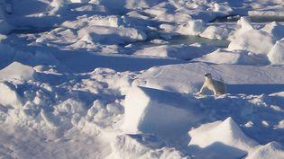 """Cliché de """"Lost World : Montagnes arctiques"""", un film de Evrard Wendenbaum  (X-Fain)"""