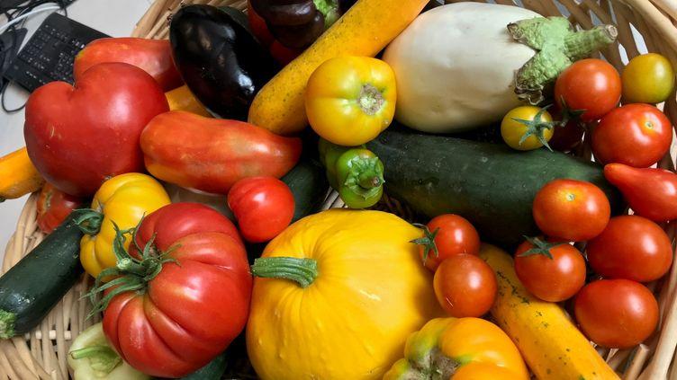 Un panier de légumes frais. Photo d'illustration. (FRANCK DAUMAS / RADIO FRANCE)