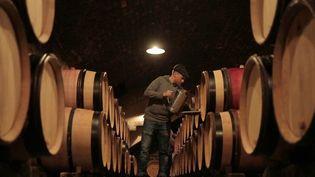 Tout au long de la semaine, France 2 est allé à la découverte des secrets de la Bourgogne. Vendredi 15 janvier, nos équipes vous présentent la tradition des vins de la région, reconnus dans le monde entier. (France 2)