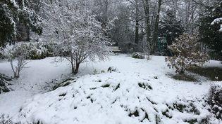 De la neige à Herblay (Val-d'Oise), le 17 mars 2018. (DAVID PERRAULT / FRANCEINFO)