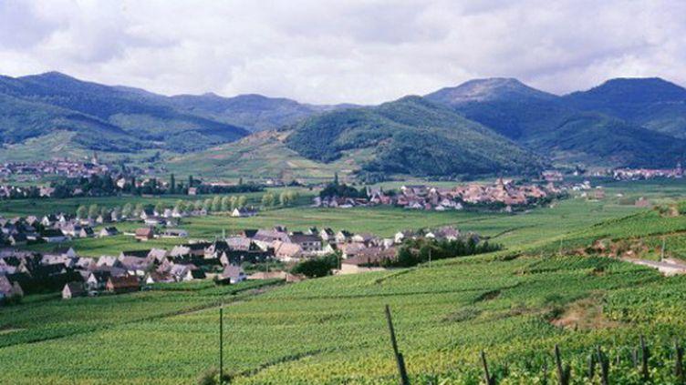Après plusieurs années d'absence, le Tour de France effectue son retour dans les Vosges.