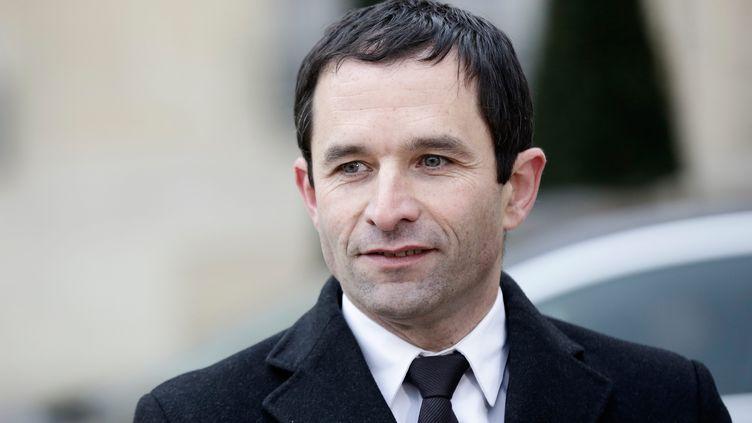 Le ministre délégué à la Consommation, Benoît Hamon, le 13 février 2013, à la sortie du Conseil des ministres. (MAXPPP)