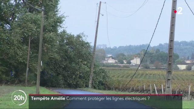 Tempête Amélie : comment protéger les lignes électriques ?