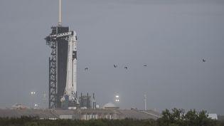 La fusée Falcon 9 de SpaxeX avec la capsule Crew Dragon sur le pas de tir du centre spatial Kennedy de la Nasa en Floride, le 10 novembre 2020. (JOEL KOWSKY / NASA / AFP)