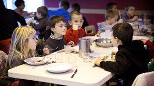 La cantine scolaire de l'école primaire Les Hélices Vertes à Cerny, dans l'Essonne. (AMELIE-BENOIST / BSIP / AFP)