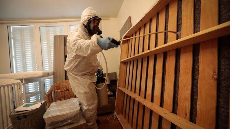 Un agent d'une société de désinfection procède au traîtement d'un appartement infesté par les puces de lit en décembre 2019. (PHILIPPE DE POULPIQUET / MAXPPP)